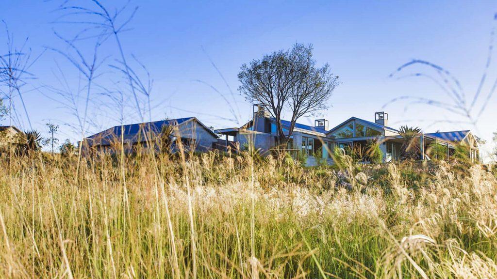Veld Architects - Modern Established Farmhouse